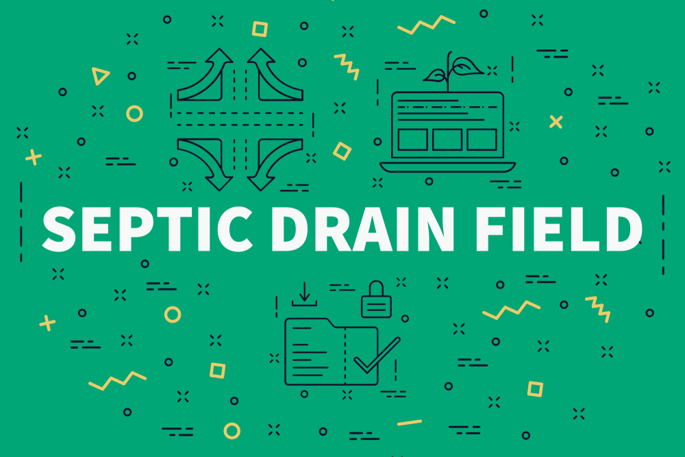 Is It Time For A New Drain Field Installation In Everett?